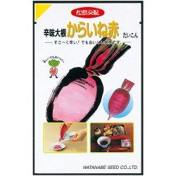 画像1: 松島交配 辛味大根 からいね赤