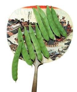 画像1: つるありカルナ菜豆