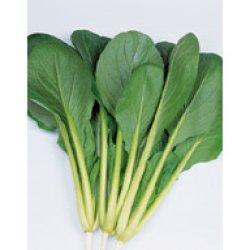 画像1: サカタ交配 はっけい小松菜