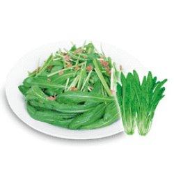 画像1: サラダ壬生菜