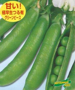 画像1: 松永育成 フルーツ実豌豆 あま実ちゃん