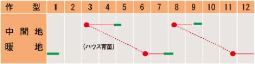 他の写真1: 武蔵野交配 ツィリン